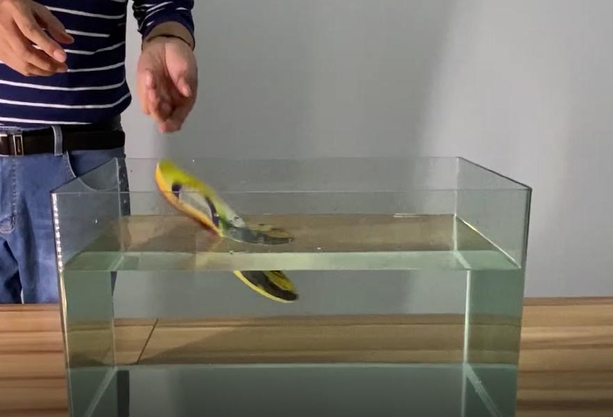 Dr.warm Heated Insoles Waterproof Test